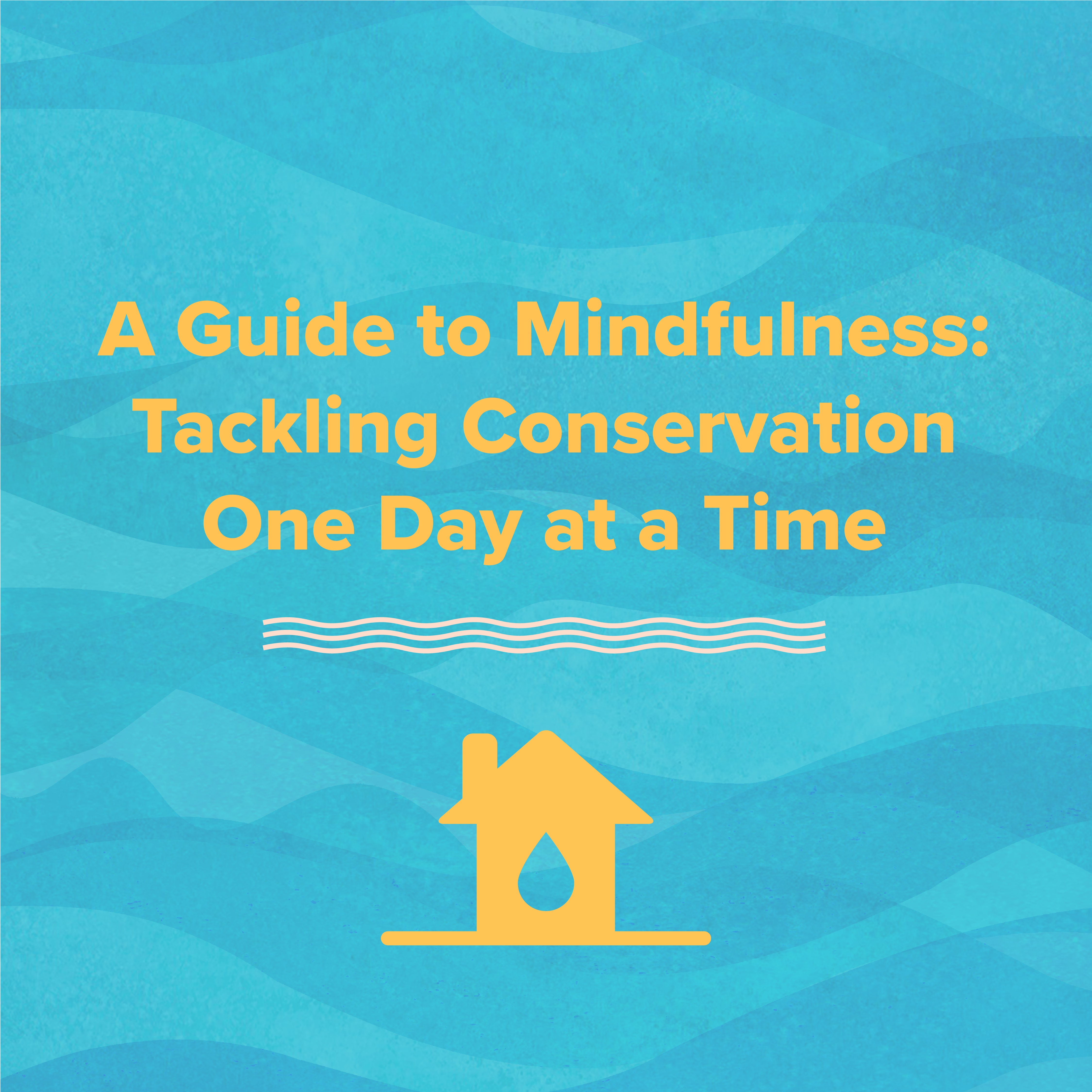 A Guide to Mindfulness: Tackling Environmental Conservation One Day at a Time